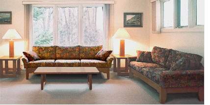 contemporary living room sofa, loveseat