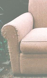 Prevent Cat Damage, Pet Resistant Sofa