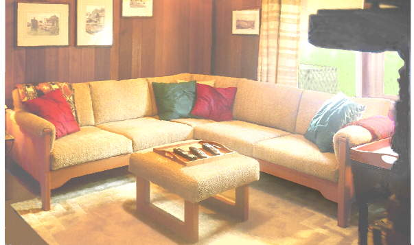 small family room sofa
